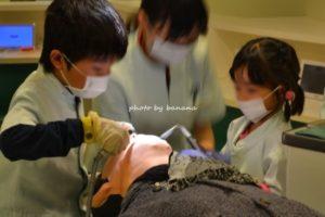 キッザニア甲子園 歯科医 歯医者さん ライオン