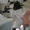 科学研究所(ヤクルト・顕微鏡)